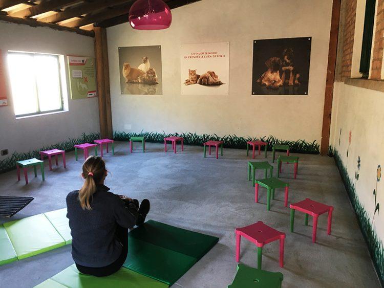 fattoria-didattica-attività-artistica-scolaresche
