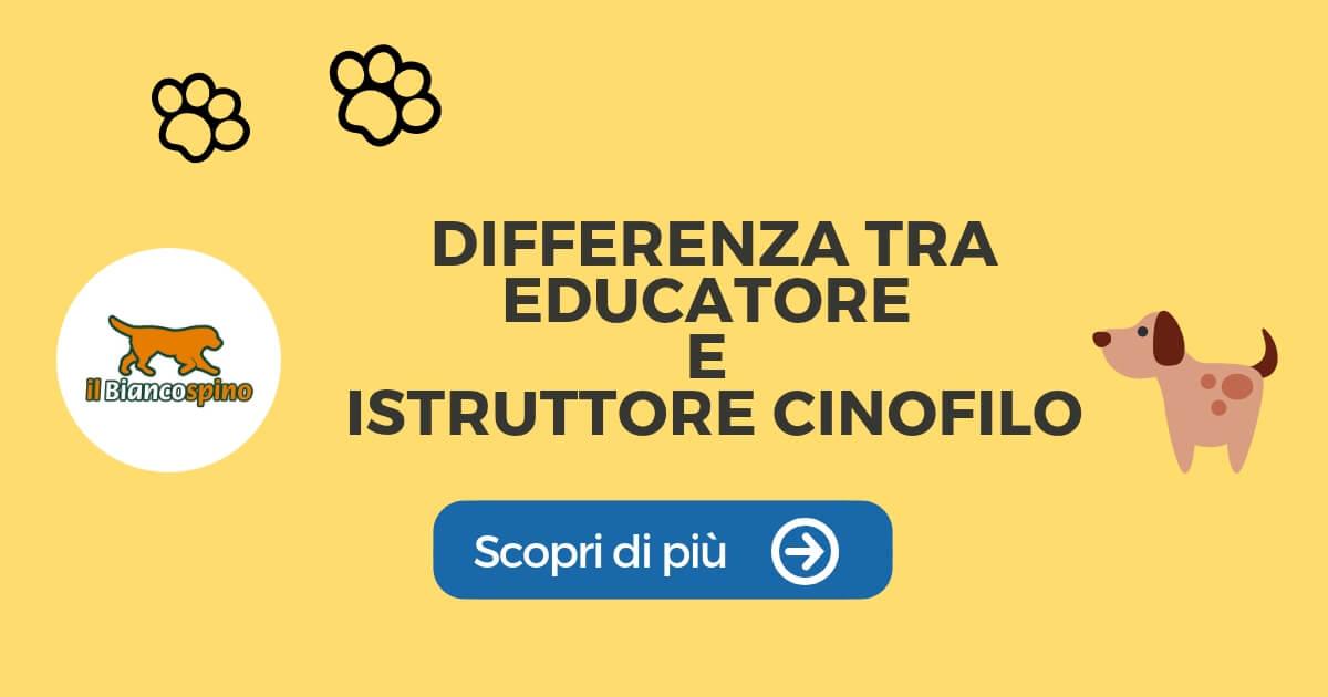 DIFFERENZA TRA ISTRUTTORE E EDUCATORE 2