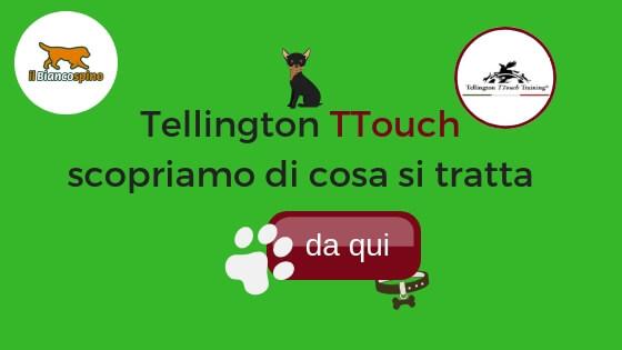 Tellington TTouch scopriamo di cosa si tratta