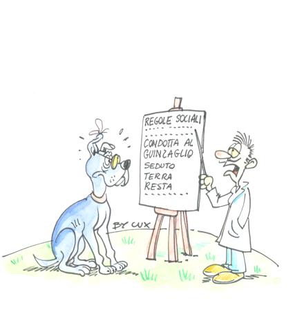 regole sociali del cane